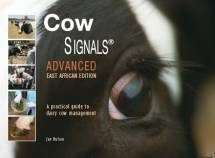 Cow Signals Advanced