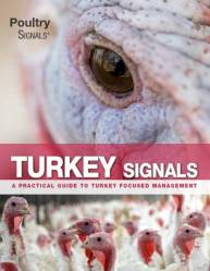 Turkey Signals - A practical guide to turkey focused management - Now available