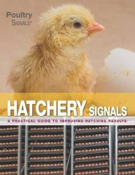 Hatchery Signals - English edition - expected June 2021