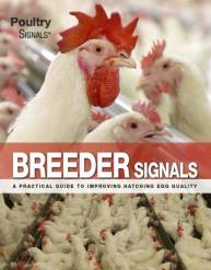Breeder Signals - expected February 2020