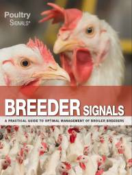Breeder Signals - English edition